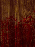Dark wood texture with blood Stock Images