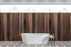 Dark wooden bathroom with tub royalty free stock photos