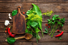 Dark wooden culinary background with various herbs and spices, top view, rustic Stock Images