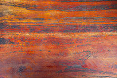Dark wooden texture. In brown tones tropical trees Royalty Free Stock Photos