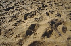 Dark yellow beach sand on sunny day stock photography
