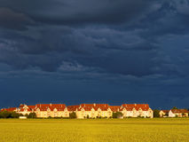 Darkened sky and golden grain field at suburb. Dramatic sky over a residential area at a grain field in Augsburg, Germany, by sunset. Silence before the storm Stock Photo