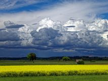 Darkened sky by thunderclouds at the countryside in summer Stock Images