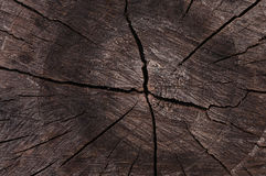 Darkened wood cut as abstract background Royalty Free Stock Photos