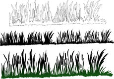 darkgreen green trawy Obraz Royalty Free