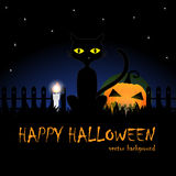 Darkness of Halloween night background with a black cat and pumpkin vector Royalty Free Stock Image