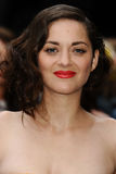 Marion Cotillard Royalty Free Stock Images
