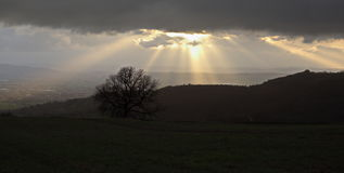 Darkness and sunrays Royalty Free Stock Photo