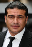 Tammer Hassan Stock Photography