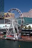 Darling Harbour Ferris Wheel, Sydney Photos libres de droits
