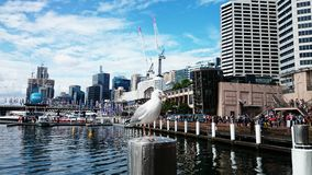Darling Harbour Royalty Free Stock Photo