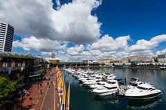 Darling harbour Sydney. Many Yachts Lying At Darling Harbour, Sydney Stock Photos