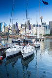 Darling Harbour Sydney Australia Royalty-vrije Stock Fotografie