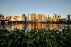 Darling Harbour in Sydney Royalty Free Stock Photography