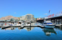 Darling Harbour in Sydney. View of Darling Harbour in Sydney Stock Photography