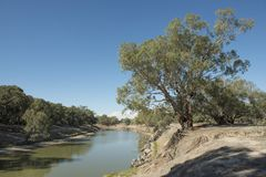 The Darling river. royalty free stock photography