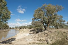 The Darling river in the far west of New South Wales royalty free stock image