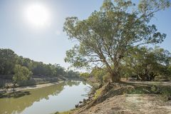 The Darling river stock photography