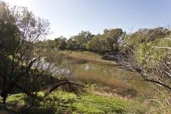 Darling River in Wilcania royalty-vrije stock foto