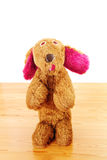 Darling stuffed toy. Is the old plush dog Stock Photography