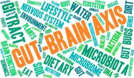 Darm-Gehirn-Achsen-Wort-Wolke stock abbildung