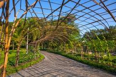 darmstadt ogród Obraz Stock