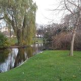 darmstadt trädgård Arkivfoton