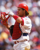 Darren Daulton, Philadelphia Phillies Stock Photography