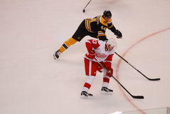 Darren Helm Detroit Red Wings Royalty Free Stock Photography