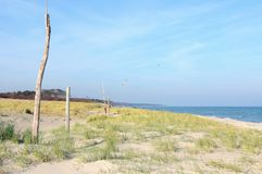 Darss Fischland peninsula at Baltic sea Germany. beach landscape with dunes reed and waves.  royalty free stock photography