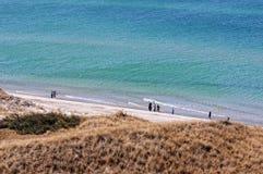 Darsser Ort på stranden för baltiskt hav på den Darss halvön Arkivbild