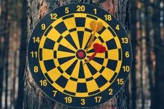 Dart board and darts on tree Stock Photo