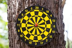 Dart board game winning middle Stock Images