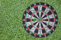 Dart board on green grass Stock Photography