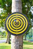 Dart game Royalty Free Stock Image