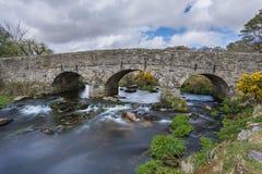 Dart River Royalty Free Stock Photo