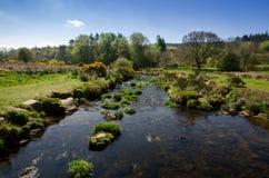The Dart River In Early Spring Season At Postbridge, Dartmoor Na. Tional Park, Devon, England, UK royalty free stock images