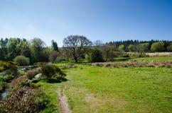 The Dart River In Early Spring Season At Postbridge, Dartmoor Na. Tional Park, Devon, England, UK stock images
