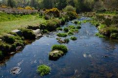 The Dart River In Early Spring Season At Postbridge, Dartmoor Na. Tional Park, Devon, England, UK royalty free stock image