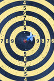 Dartboard with arrow Stock Images