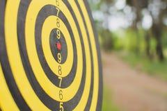 Dartboard buiten in het park Stock Foto's