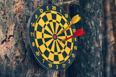 Dartboard and darts on a tree. Closeup of a dartboard with a red and yellow dart hung on a tree in a forest Stock Photos