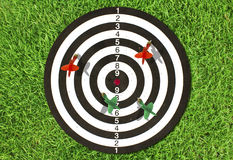 Dartboard on green grass Royalty Free Stock Images