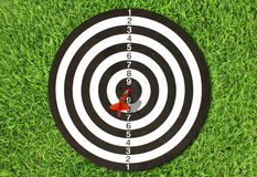 Dartboard on green grass Stock Images