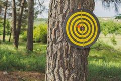 Dartboard met pijltje buiten in het park Stock Foto