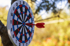 Dartboard on tree and dart in center of target Royalty Free Stock Photography