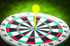 Dartboard and yellow. Dart on grass background Stock Photos
