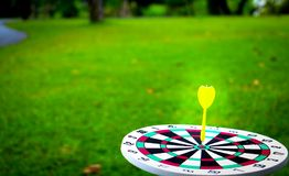 Dartboard and yellow. Dart on grass background Royalty Free Stock Images
