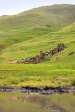 Dartlo by Tusheti region (Georgia) royaltyfri fotografi