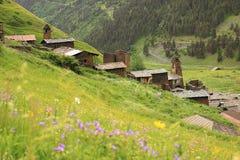 Dartlo village. Tusheti region (Georgia) Royalty Free Stock Photos